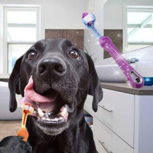 Toothbrush For Dogs And Cats