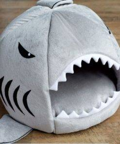 cool pet house shark