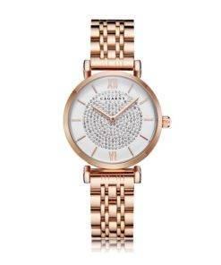 H25d85e9fcbf84dc4a7cd5d3460e93a3ar Silver Rose Gold Stainless Steel Bracelet Watch For  Women