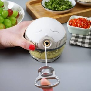 Hand-Drawn Multifunctional Garlic Food Chopper