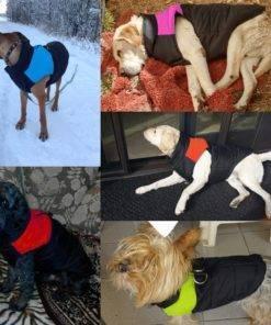 Cool Waterproof Vest Coat For Dogs