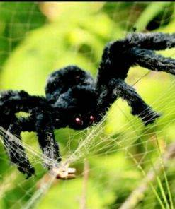 HTB1KdorXiDxK1Rjy1zcq6yGeXXaT Big Black Spider - Cool Halloween Decor