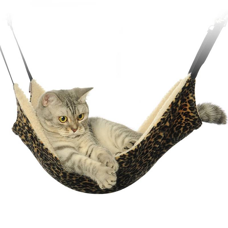 hammock for cat
