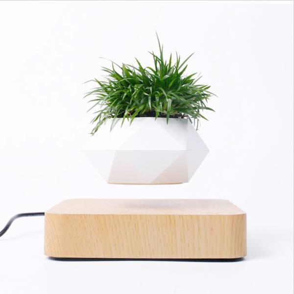 Levitating flower pot