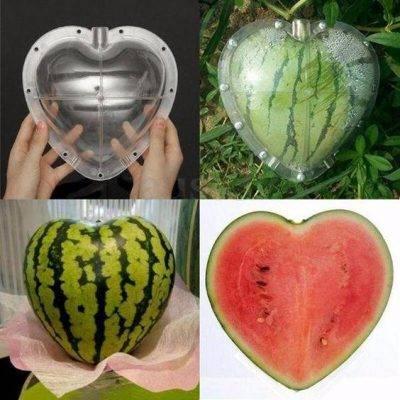 Watermelon heart shaper