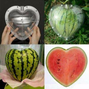 Fruit Growth Shaper – Watermelon heart Shaper