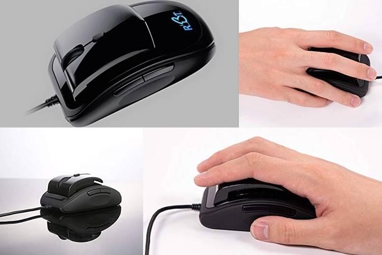 054 rbt mouse