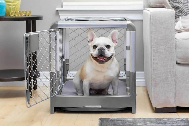 084 diggs revol dog crate