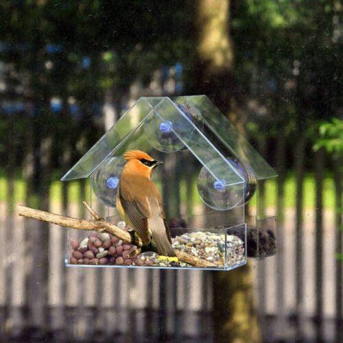Transparent House Bird Feeder