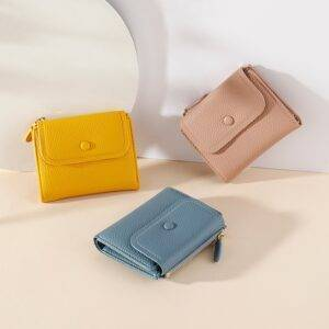 Flat Color Small coin purse for women Gadkit