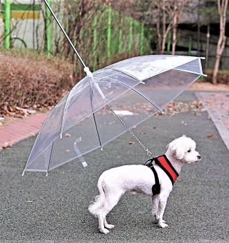 Umbrella For Pet