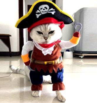 Pirate Pet Costume Dogs & Cats